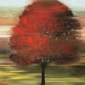 Flow Trees I