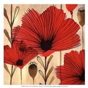 Wild Poppies II - Mini