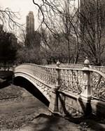 Pine Bank Bridge NYC