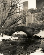 Gapstow Bridge NYC
