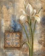 Iris and Tile