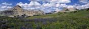 USA, Wyoming, Grand Teton Park