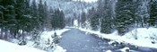 USA, Montana, Gallatin River, winter