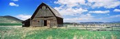 Old barn in a field, Colorado, USA
