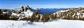 Trees on a snow covered landscape, Heavenly Mountain Resort, Lake Tahoe, California-Nevada Border, USA