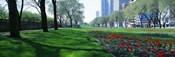Public Gardens, Loop, Cityscape, Grant Park, Chicago, Illinois, USA