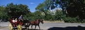 Tourists Traveling In A Horse Cart, NYC, New York City, New York State, USA