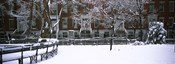 Washington Square Park in the snow, Manhattan