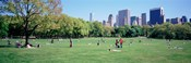 Group Of People In A Park, Sheep Meadow, Central Park, NYC, New York City, New York State, USA