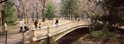 Group of people walking on an arch bridge, Central Park, Manhattan, New York City, New York State, USA