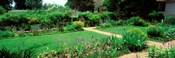 USA, Virginia, Williamsburg, colonial garden