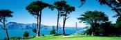 Golf Course w\ Golden Gate Bridge San Francisco CA USA