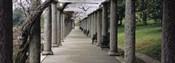 Columns Along A Path In A Garden, Maymont, Richmond, Virginia, USA