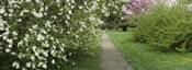 Path In A Park, Richmond, Virginia, USA