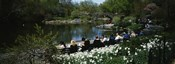 Group of people sitting on benches near a pond, Central Park, Manhattan, New York City, New York State, USA