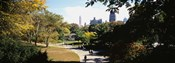 High angle view of a group of people walking in a park, Central Park, Manhattan, New York City, New York State, USA