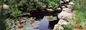 Sunken Garden, Olbrich Botanical Gardens, Madison, Wisconsin