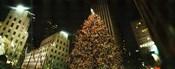 Christmas tree lit up at night, Rockefeller Center, Manhattan, New York State