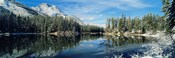 Reflection of trees in a lake, Yellowstone National Park, Wyoming, USA