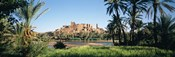 Palm trees with a fortress in the background, Tiffoultoute, Ouarzazate, Marrakesh, Morocco