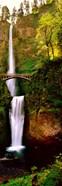 Footbridge in front of a waterfall, Multnomah Falls, Columbia River Gorge, Multnomah County, Oregon