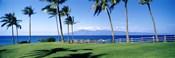 Palm trees at the coast, Ritz Carlton Hotel, Kapalua, Molokai, Maui, Hawaii, USA