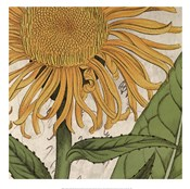 Joyful Bloom I
