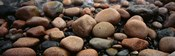 Rocks Acadia National Park ME USA