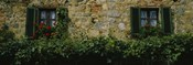 Flowers on a window, Monteriggioni, Tuscany, Italy