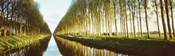 Belgium, tree lined waterway through countryside