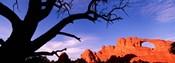 Skyline Arch, Arches National Park, Utah, USA