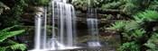 Waterfall in a forest, Russell Falls, Mt Field National Park, Tasmania, Australia
