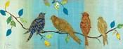 Bird Chat I