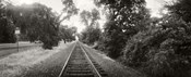 Railroad track, Napa Valley, California, USA