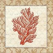 Coral Beauty Light I