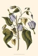 Lavender Floral I