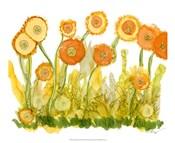 Sunlit Poppies II