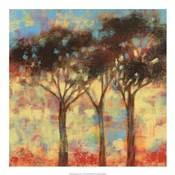 Kaleidoscope Trees I