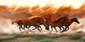 Blazing Herd II