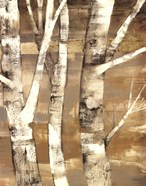Wandering Through the Birches II