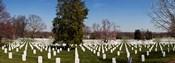 Headstones in a cemetery, Arlington National Cemetery, Arlington, Virginia, USA