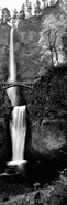 Footbridge in front of a waterfall, Multnomah Falls, Columbia River Gorge, Multnomah County, Oregon (black and white)