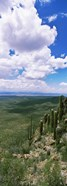 Clouds over a landscape, Tucson Mountain Park, Tucson, Arizona, USA