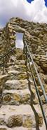 Bowen Homestead, Tucson Mountain Park, Tucson, Arizona, USA