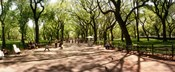 Central Park, New York City, New York State
