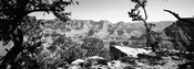 Mather Point in black and white, South Rim, Grand Canyon National Park, Arizona
