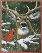 Deer With Cardinal