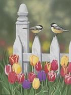 Chickadees And Tulips
