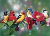 Songbirds On Hollyhock