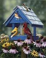 Birdhouse/Birds/Coneflower